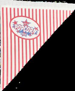 Popcornzakjes 21 cm - 100 stuks